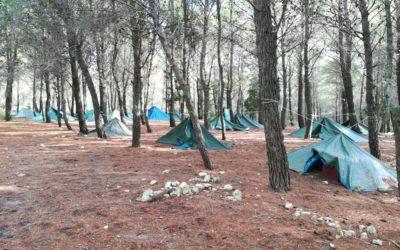 Campo dei Timonieri 2020 – Distretto Sicilia Orientale